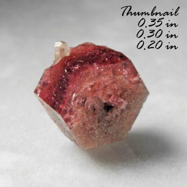 Rare Raspberry Red Beryl (also sometimes called Bixbite) & Topaz ? Location: Thomas Range? Juab Co.? Utah.   BOX04