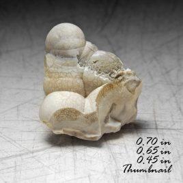 Tridymite (high temp Quartz Paramorph)  Location: Thomas Range Juab Co. Utah.