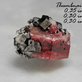 BOOK_SPECIMEN-Rare Raspberry Red Beryl (also sometimes called Bixbite) with several bixbyites – Location: Thomas Range, Juab Co., Utah.